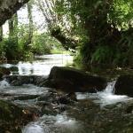 Sendeiro Do Rio Louro