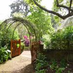 Blandy's Garden