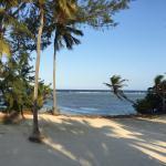 Pelican Beach - South Water Caye รูปภาพ