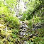 Monkman Provincial Park Photo