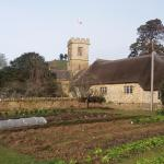 the vegetable plot with church and famous Colmer's Hill peeping out behind.