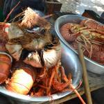 Cada lagosta maior que a outra..rs
