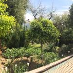 Photo of Le Jardin des Biehn