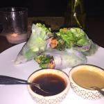 spring rolls with 2 dipping sauces