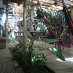 Photo of Buddy's Hostel e Pousada