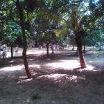 Mantra Veppathur Resort Foto