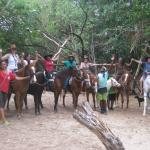 Being with Horses Foto
