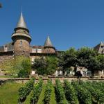Chateau de Castel-Novel