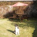 Foto di Doolin Cottage Bed & Breakfast