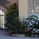 Krypta, Katakomben und Museum St. Agatha Foto