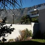 Table Mountain from the garden