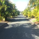 Alex Beach Cabins & Tourist Park Foto