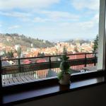 View from restaurant / breakfast room