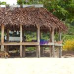 relaxing in the fale - friendly local dog...