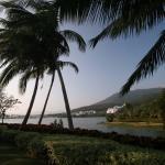Resort Golden Palm