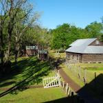 Jarrell Plantation