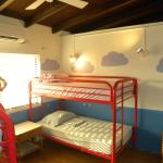 Bunk Beds in shared dorms