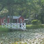 Pond and cottages