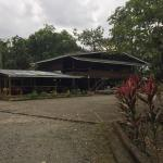 Hotel El Pizote Lodge Photo