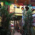 Foto di Hostal Oaxaca Magic