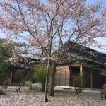 Photo of Yukyu no Yado Isshin