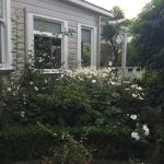 Photo de Anglesea House Bed & Breakfast