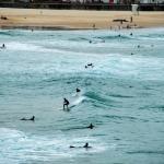 Foto de Real Sydney Tours