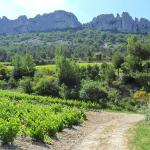Provence VTC