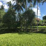Ananda Cottages