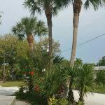 Buchan's Landing Resort