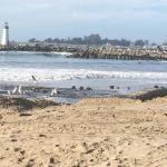 Santa Cruz By Twin Lakes Beach