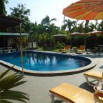 Pool und Garten nach Renovierung
