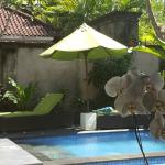 Foto de Kamuela Villas and Suite Sanur