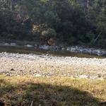 Sonanadi Wildlife Sanctuary
