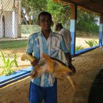 Arun and Aman Turtle Conservation and Research Center