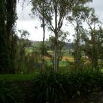 Hacienda Pinsaqui Photo