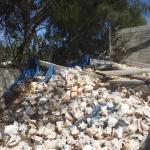 Foto di Caicos Conch Farm