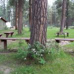 Foto de Sportsman's Campground and Mountain Cabins
