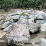 Jungle River Lodge Εικόνα