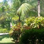 Hotel Palm Garden Foto