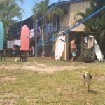 Backpackers Inn on the Beach at Byron Bay Photo