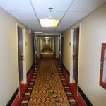 Clean 3rd floor corridor