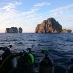 Scuba Cat Diving Foto
