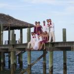 Weddings and Honeymoons too!