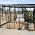 Billy The Kid's grave.