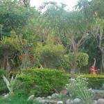 Corbett Fun Resort Foto