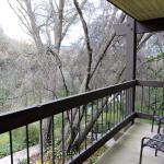BEST WESTERN PLUS Yosemite Gateway Inn Foto