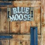 The Blue Moose Tavern
