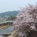 Photo de Ahiyagawa Kahan
