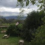 Foto de La Casa del Tilo